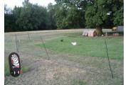 Poultry Kits